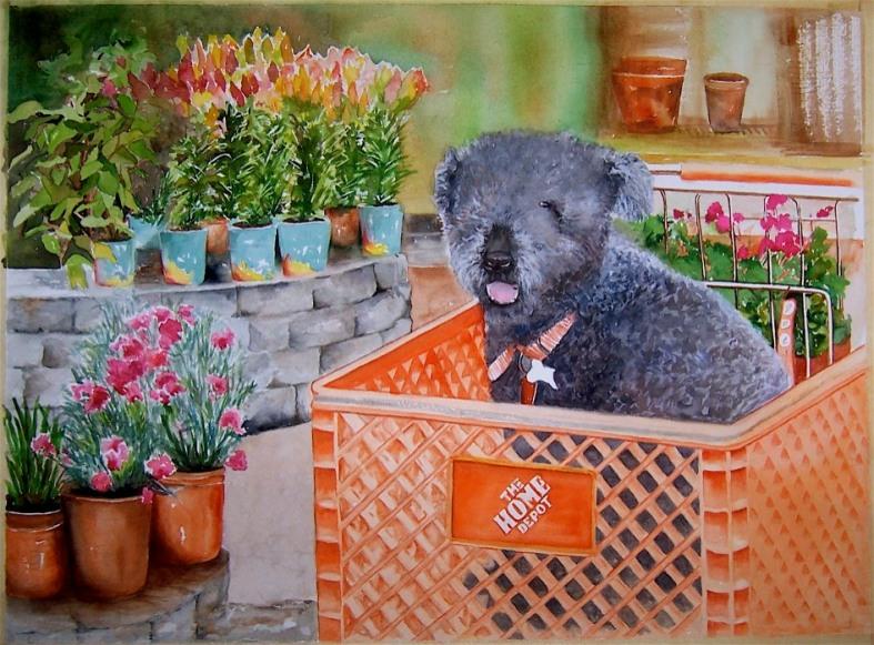 Home Depot dog
