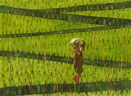 Rice Paddy , Bali